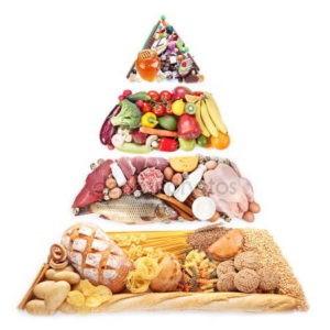 Анатомия здорового питания