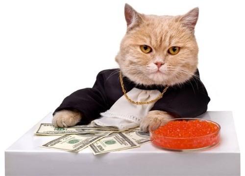10 правил как стать богатым и успешным с нуля