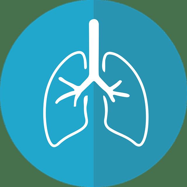 Снимок легких здорового человека: расшифровка и дыхательные тесты