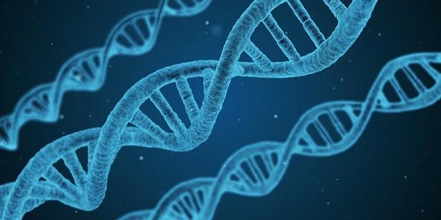 Валеология: наука о здоровом человеке