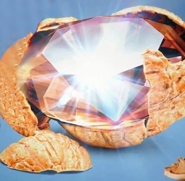 Алмаз в скорлупе